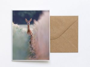 Startled Deer Sustainable Greeting Card 2020