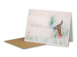 Alert Deer Sustainable Greeting Card 2020/21