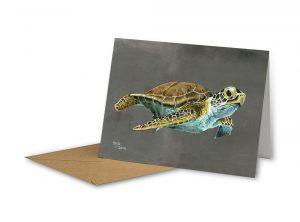 Turtle Greeting Card Art by Sue Ennion