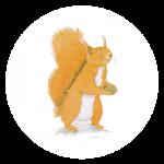reCirclart Squirrel